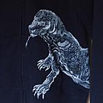 白野菊今年の碧さん鯉の柄