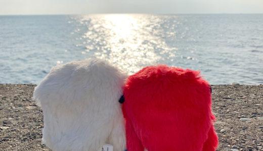 姉ちゃんにアレクサと呼ばれ冬至かな/一泊二日東京湾二度横断千葉横須賀乗り物の旅!