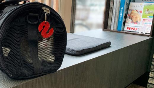 梅雨兆す猫の健康考える/猫ちゃん健康診断ツアーの巻
