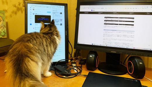 人生で大切なものは作業領域の広さだ!/ノートパソコンでモニタ2台接続した話(Windows10版)