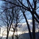 冬ざるるティファニーの前で朝食を/トルーマン・カポーティ 翻訳:村上春樹「ティファニーで朝食を」