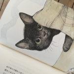 風立ちぬかわいい本を読んでいる/町田康・ヒグチユウコ「猫のエルは」 川上弘美「このあたりの人たち」