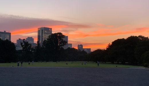 休暇明け新宿御苑で夕日撮る