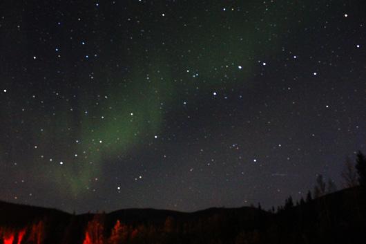 1,000kmのロード・ムービーアラスカで/アラスカ旅行記その1-概略編