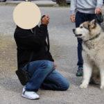 ミシガンで谷口ジローの「犬を飼う」/映画「僕のワンダフル・ライフ(原題 A Dog's Purpose)」「僕のワンダフル・ジャーニー(原題 A Dog's Journey)」/ #犬映画です
