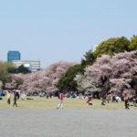春風駘蕩庶民の春も極まれり