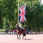 衛兵のその服赤し薔薇の門-ロンドン日記 その8  ロンドンベッタベタ観光の巻