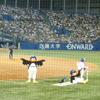 センバツはタイニー野球大会で/今年の21世紀枠対決小豆島対釜石が爽やかすぎて!