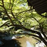 スカートで夏の京都の大冒険/その1 神護寺・清滝・保津峡めぐり、うっかり「阿吽」聖地巡礼の旅