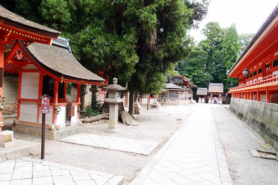 スカートで夏の京都の大冒険/その2 石清水八幡宮・伏見試飲ツアー・寺田屋訪問の巻