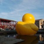Giant Rubber Duck と冬の川/すみのえアート・ビート2018