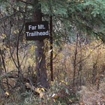 あの山の向うにあるは別の山/アラスカ旅行記 旅程編その2-二日目 プチトレッキング